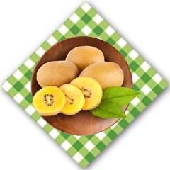 黃心獼猴桃  6枚試吃裝