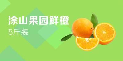 涂山果园 赣南脐橙 当季水果 品尝装 2.5kg